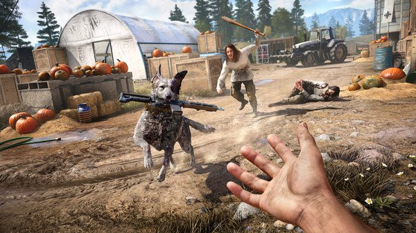 Far Cry 5 Gold Edition PC billig Schlüssel zum Download
