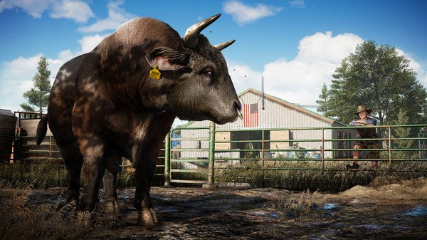 Far Cry 5 PC cheap key to download